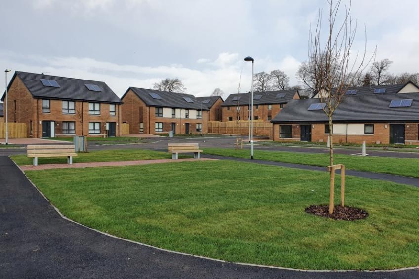A picture of Sanctuary's Nitshill wins best regeneration award