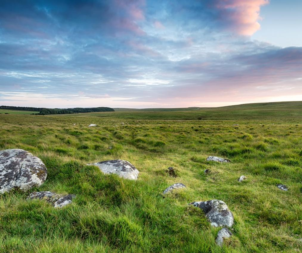 Cornwall's countryside