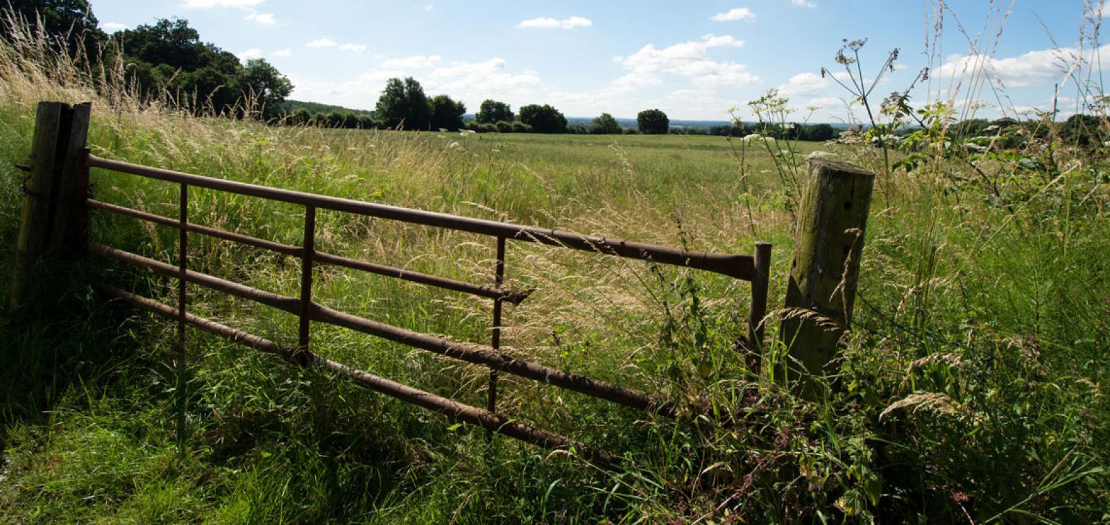 Sittingbourne countryside